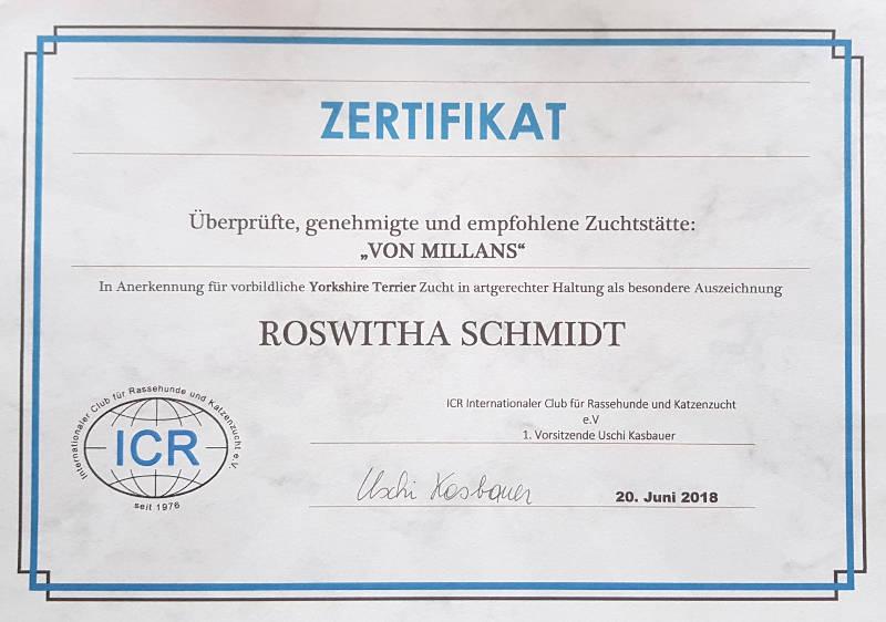 Zertifikat Zuchtverein für Yorkshire Bamberg